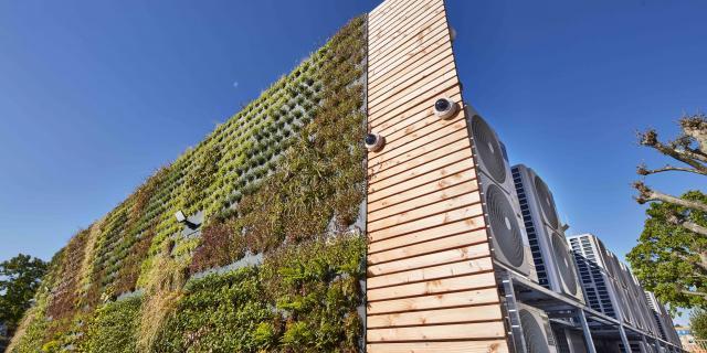 GreenIT: Welche Möglichkeiten bieten Rechenzentren?